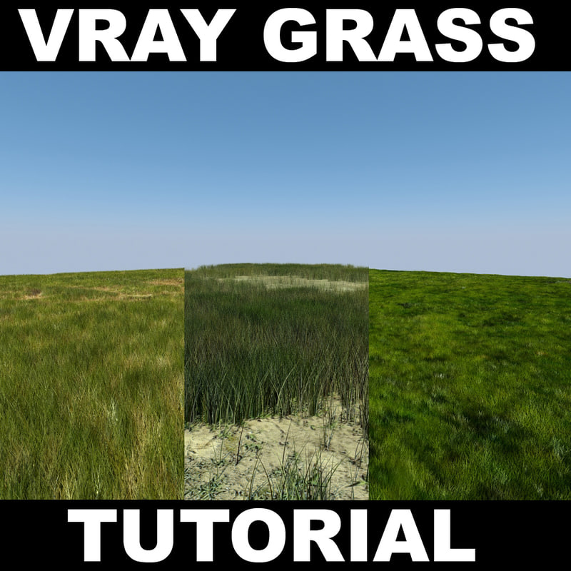 grass_screen1.jpg