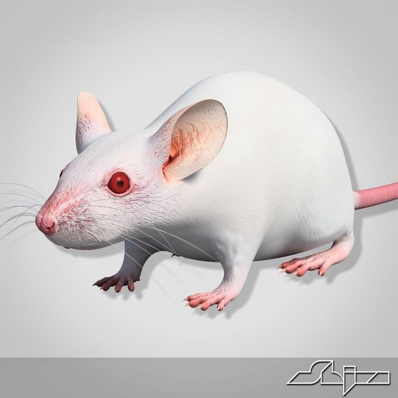 Mouse_render-7.jpg
