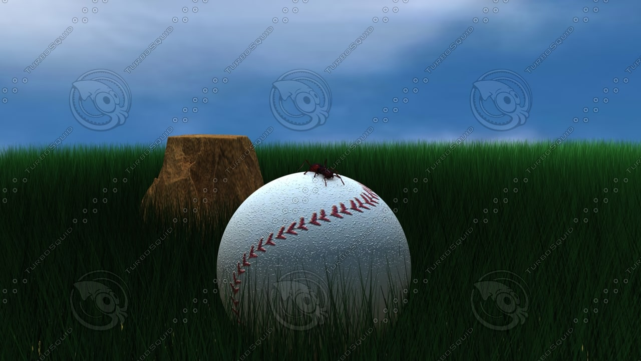 honkbal-mier.jpg