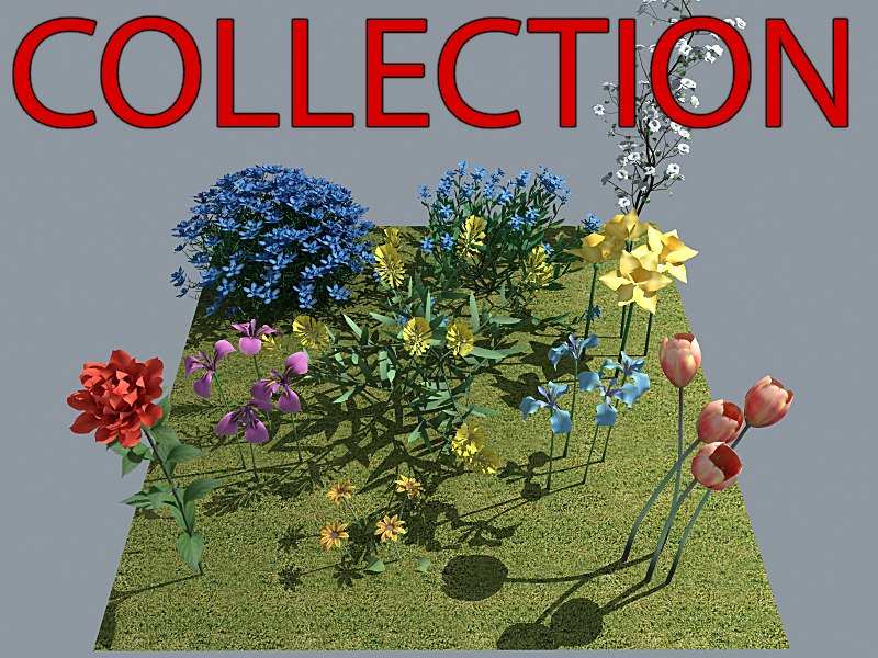 Flower Collection_v2_MAX8_Vray1.png
