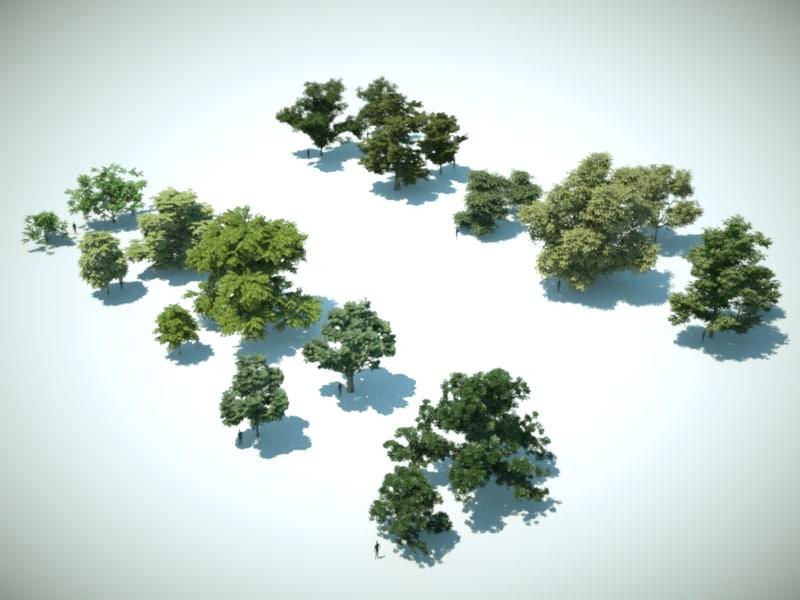 10 Deciduous trees