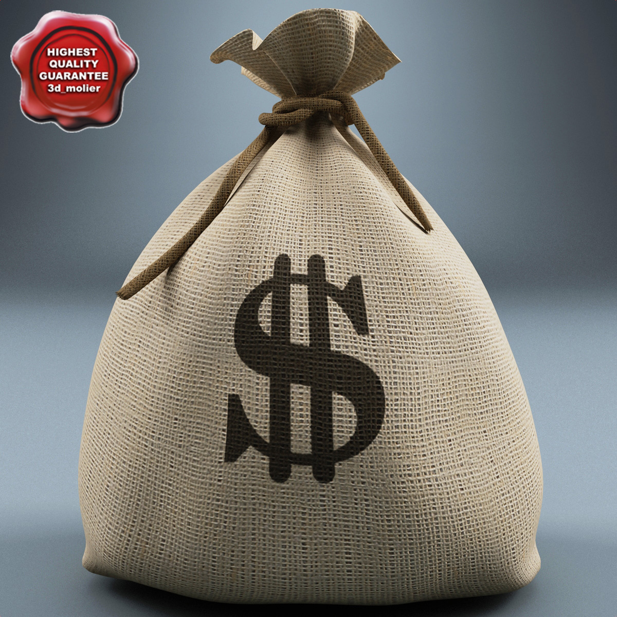 Money_Bag_V2_00.jpg