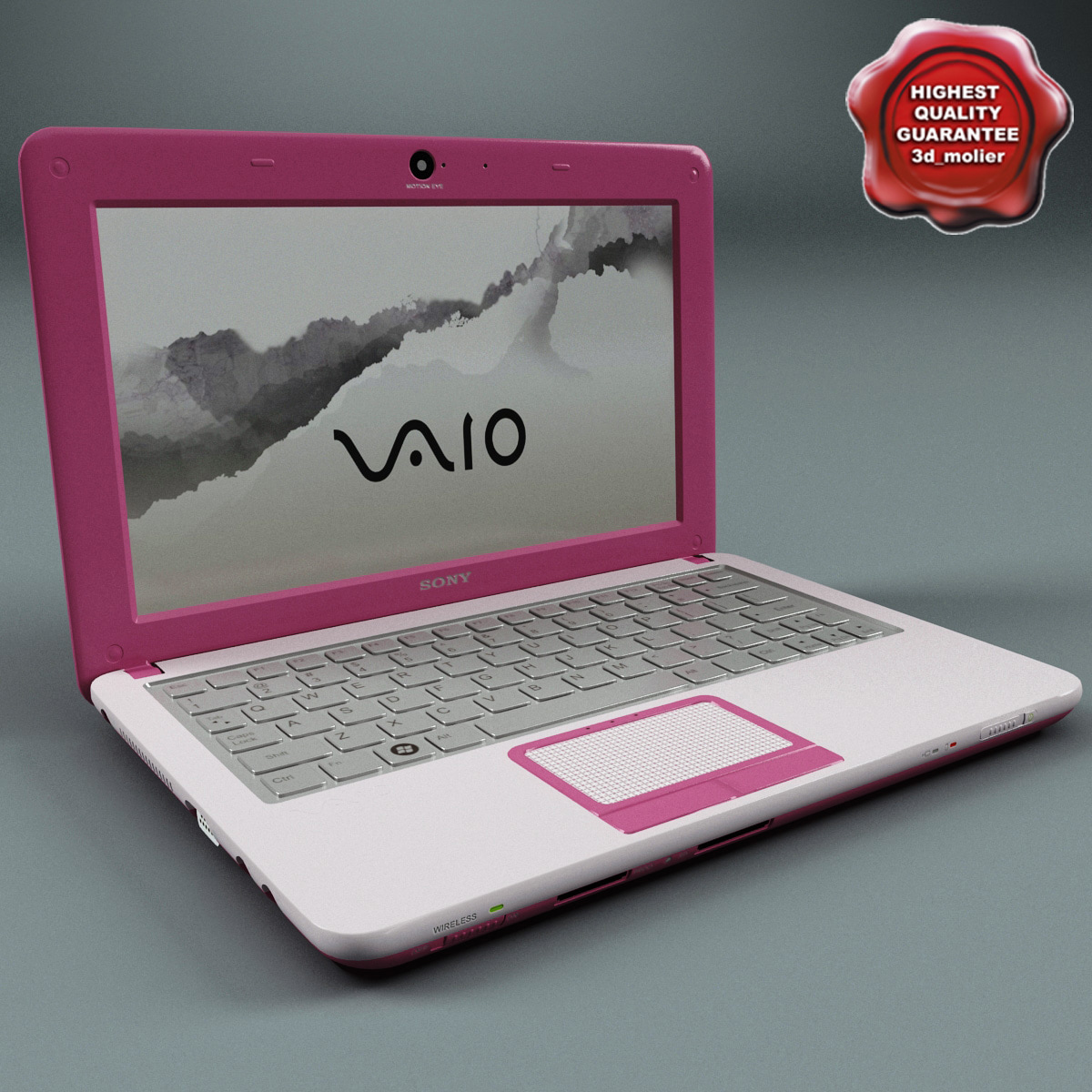 Laptop_Sony_Vaio_Pink_00.jpg