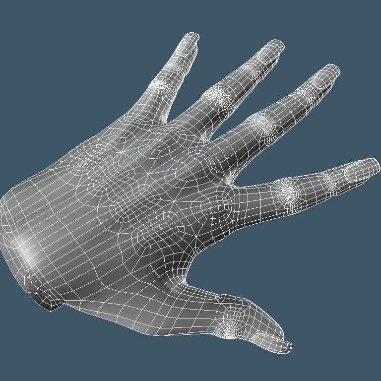 Hand4Squid3.jpg