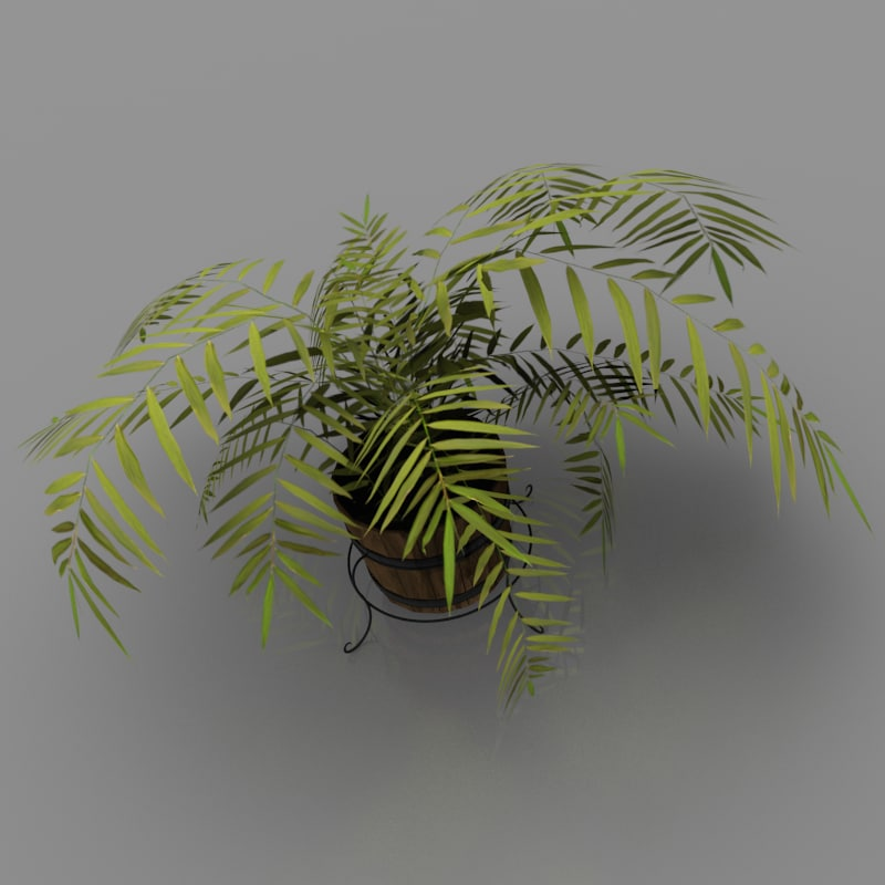 plant_01.png