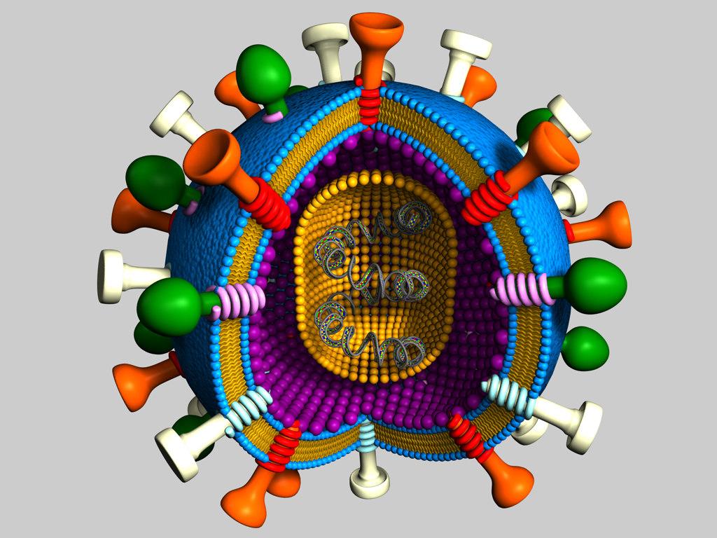 virus01.jpg