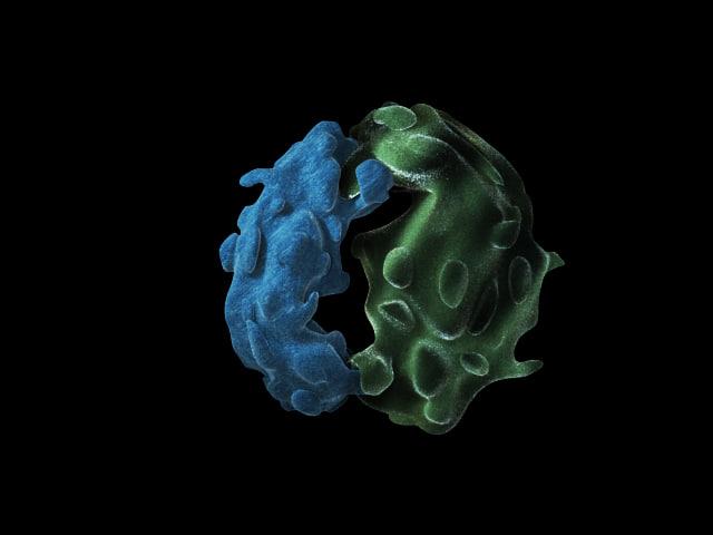 ribosome.jpg