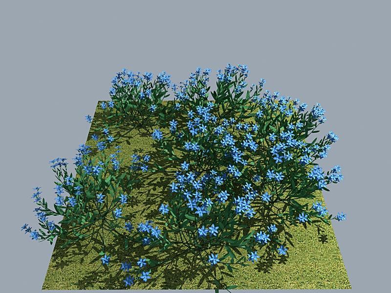 Flower_Myosotis_Lights_MAX8_Vray1_5RC3.png