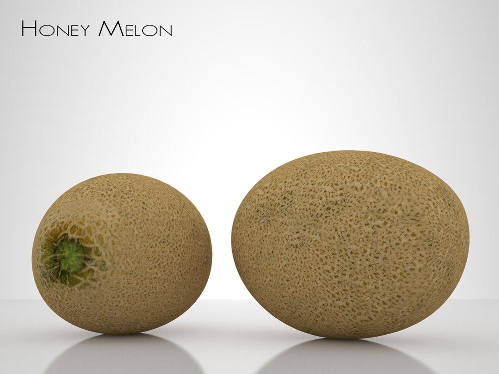 3d honey melon model