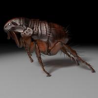 flea 3D models