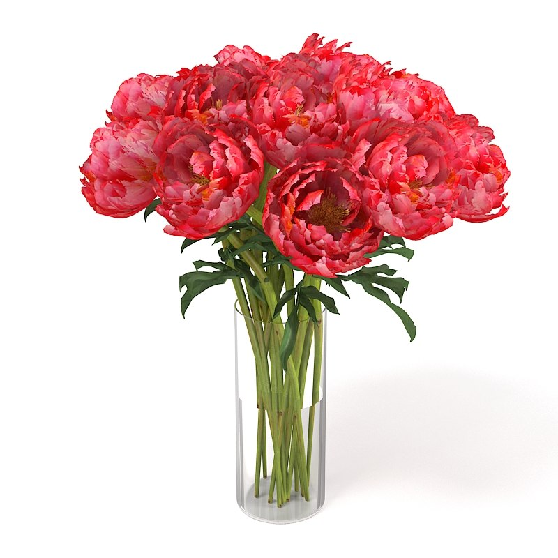 pink red peony paeony piones flower bouquet enterance decoration accessory decorative.jpg