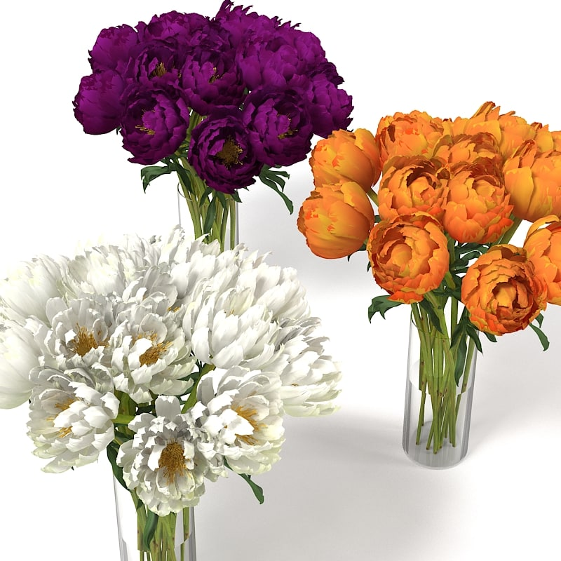 WHITE VIOLET ORANGE PIONES PAEONY PEONY FLOWERS ENDERANCE INTERIOR ACCESSORY DECOR ACCENT BOUQUET CHRYSANTEMUM VASE.jpg