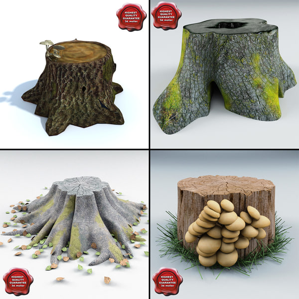 Old Stumps Collection Stock Photography