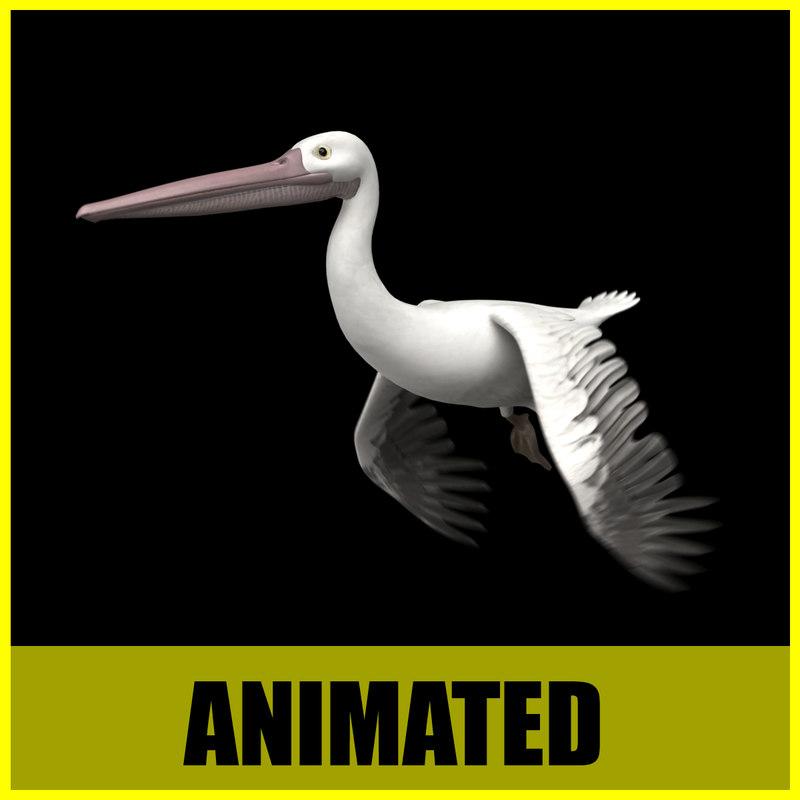Pelikan - Animated