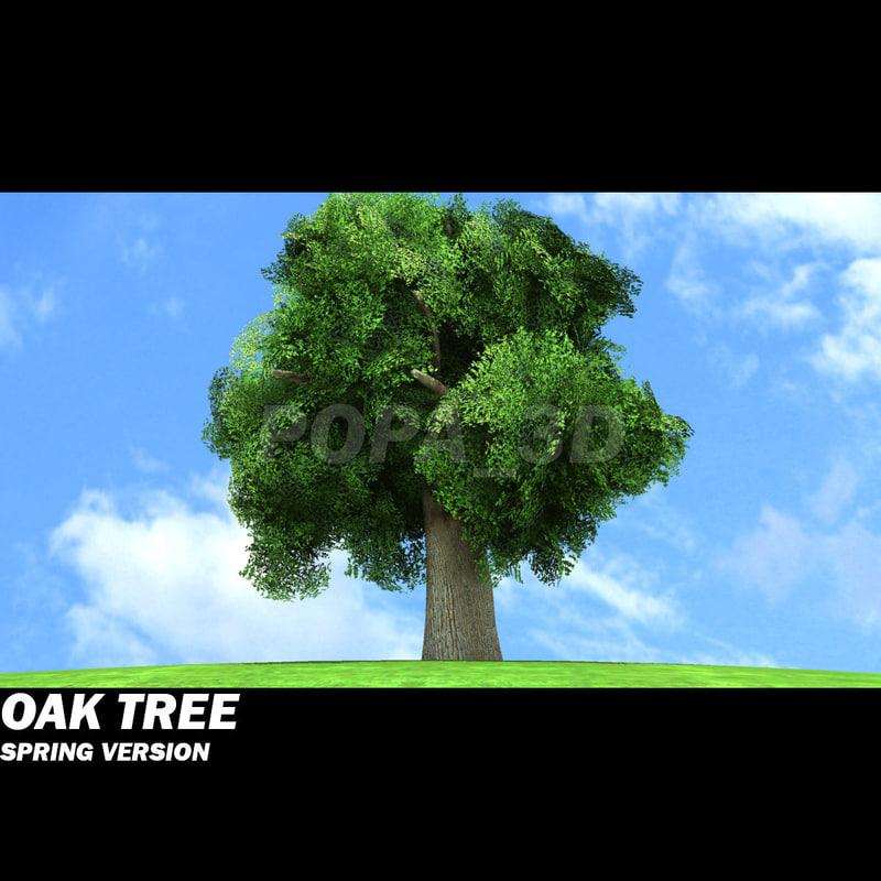 oak-a.jpg