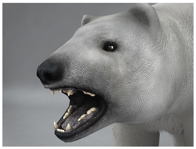 polar_bear_low_poly_preview_04.jpg