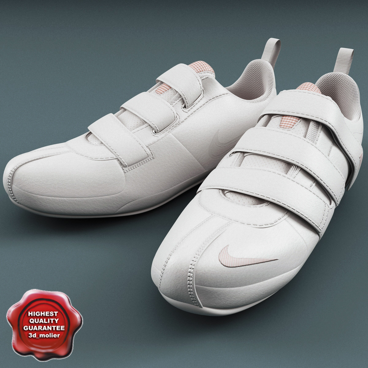 Sneakers_Nike_Fixed_Speed_V_00.jpg