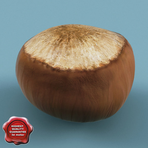 Hazelnut 3D Models