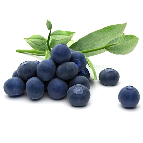 blueberries 3D Models