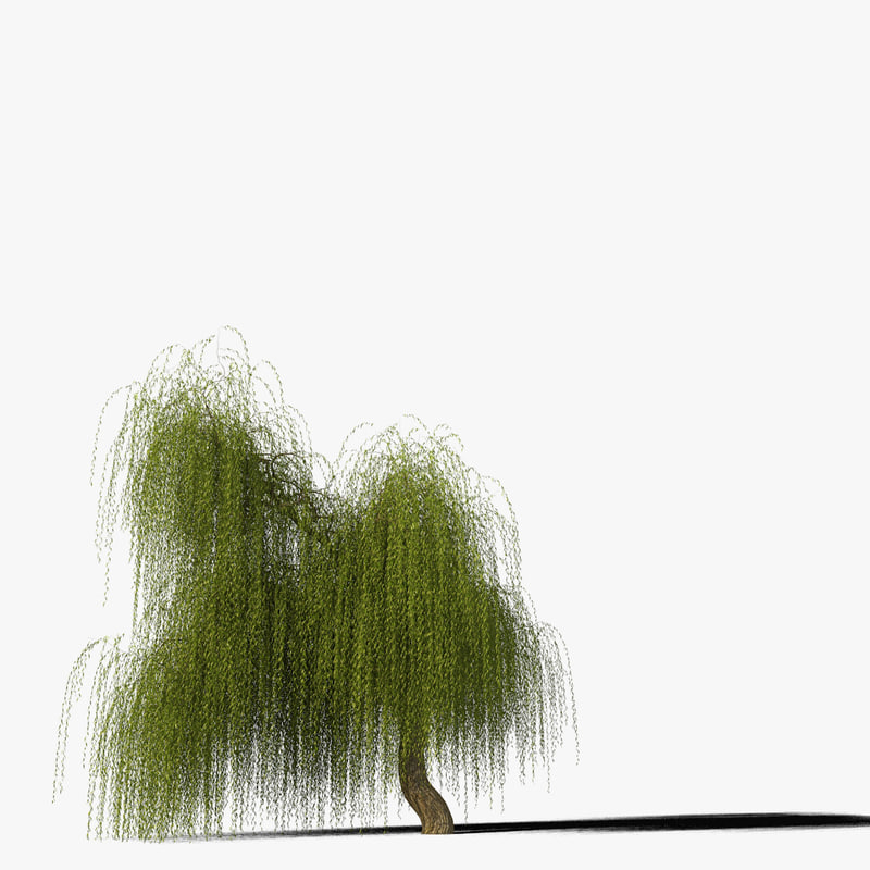 willow_typ1_render_f_0005.jpg
