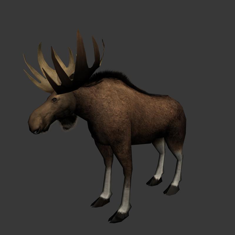 moose_08.jpg