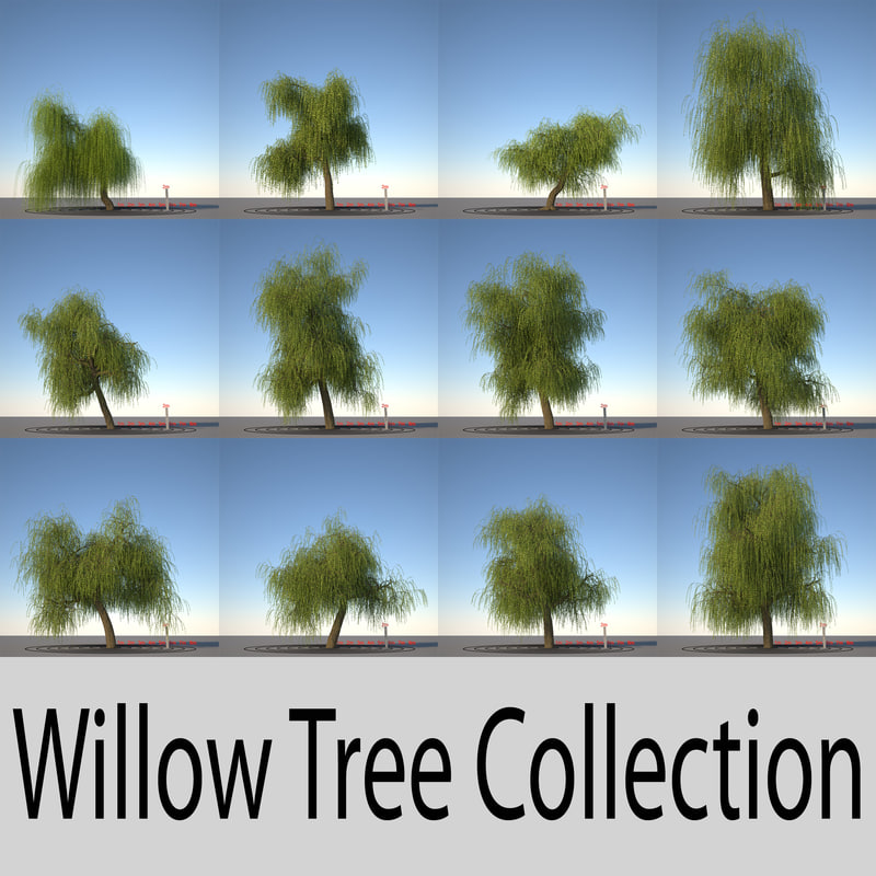 willow_collection_header.jpg