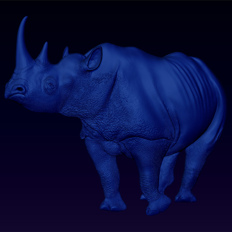 Black-Rhino-Stare-main-view.jpg