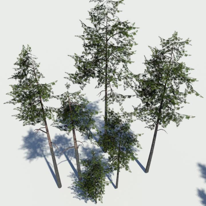 grimdesigns_pinepack2.jpg