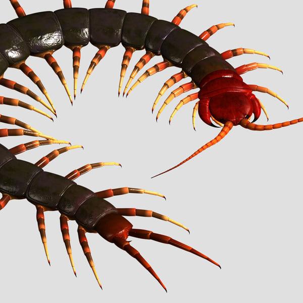 3D centipede Models max 3ds obj fbx dxf