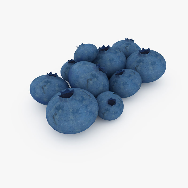 blueberry_render_01.jpg