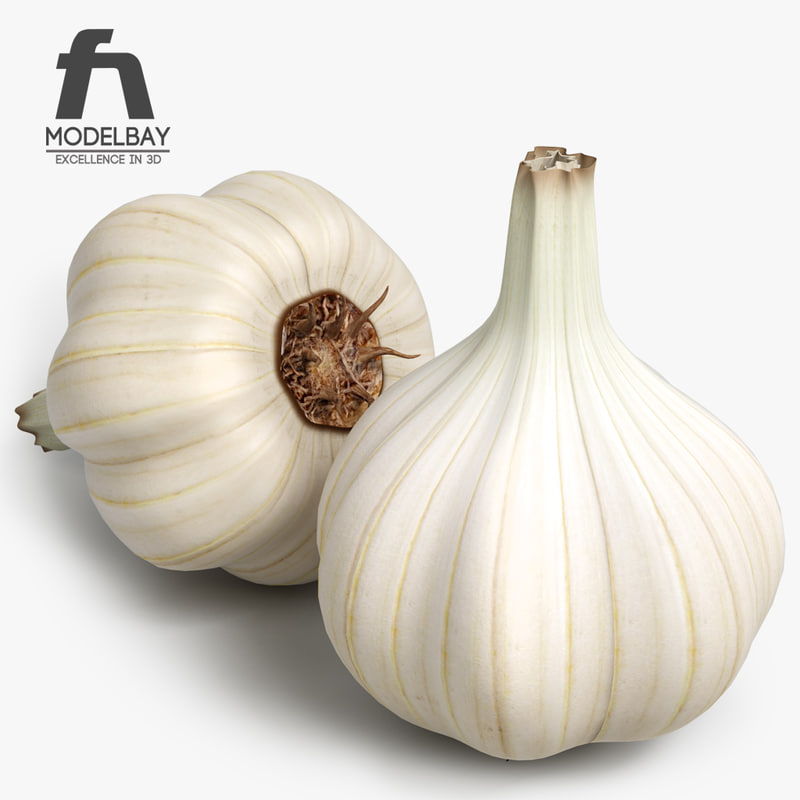 garlic_3d_model_vray_vegetable.jpg