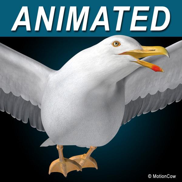 Seagull ( Flying ) 3D Models
