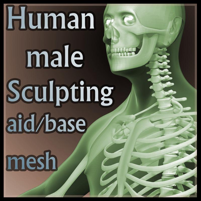 HumanMaleSRImage.jpg