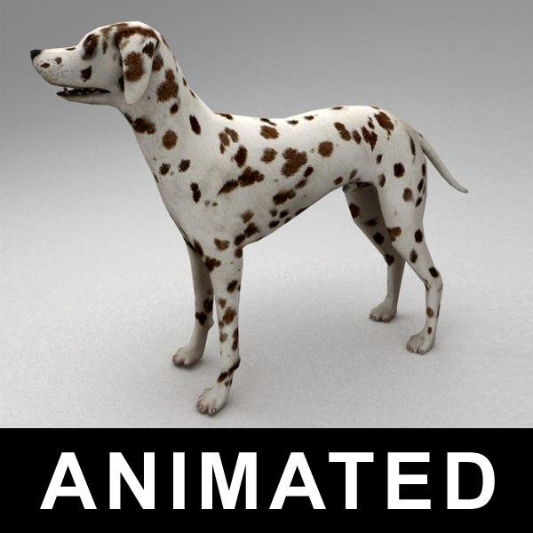 Dalmatian rigged 3D Models
