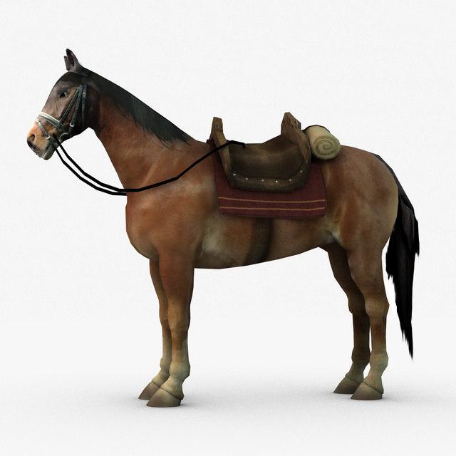 horserig.jpg