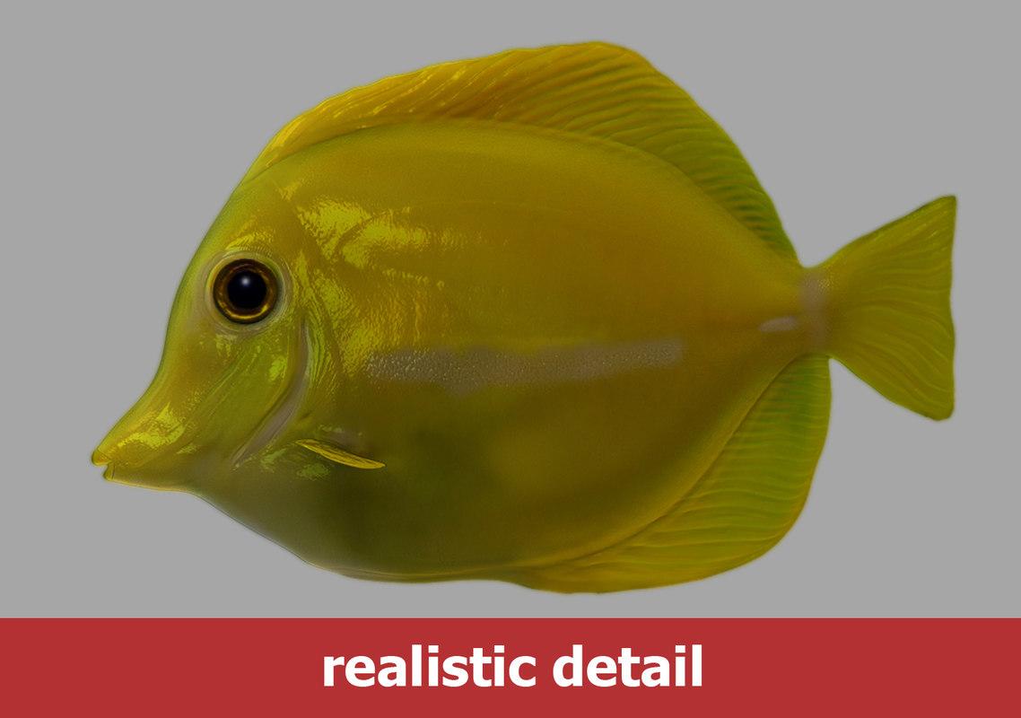 Yellow tang fish obj for Yellow tang fish