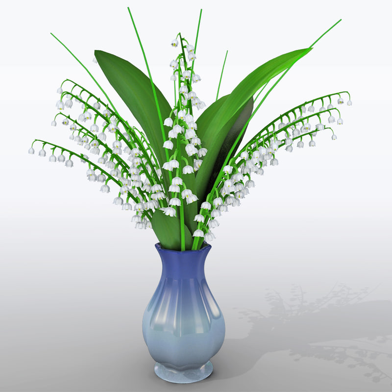 May Lily in Vase