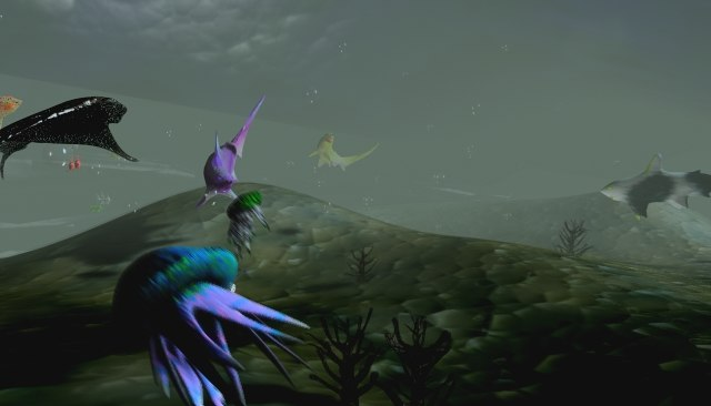 3d max life sea   animation fish
