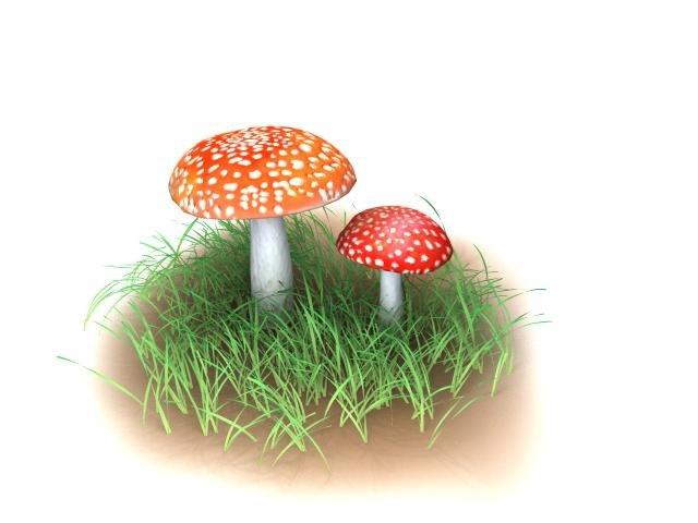 amanita_muscaria_mushroom_render_06.jpg