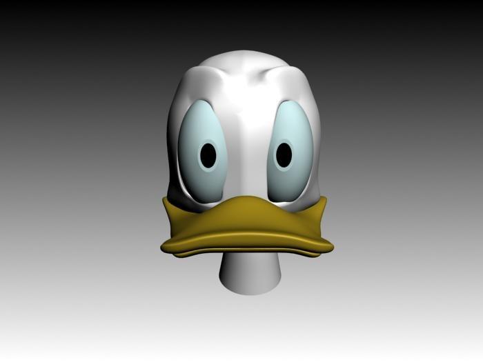 duck_head_front.jpg