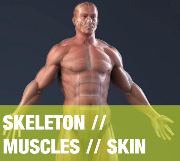 Male Anatomy(bones,muscles,skin) Texture Maps