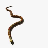 Mud Snake 3D models