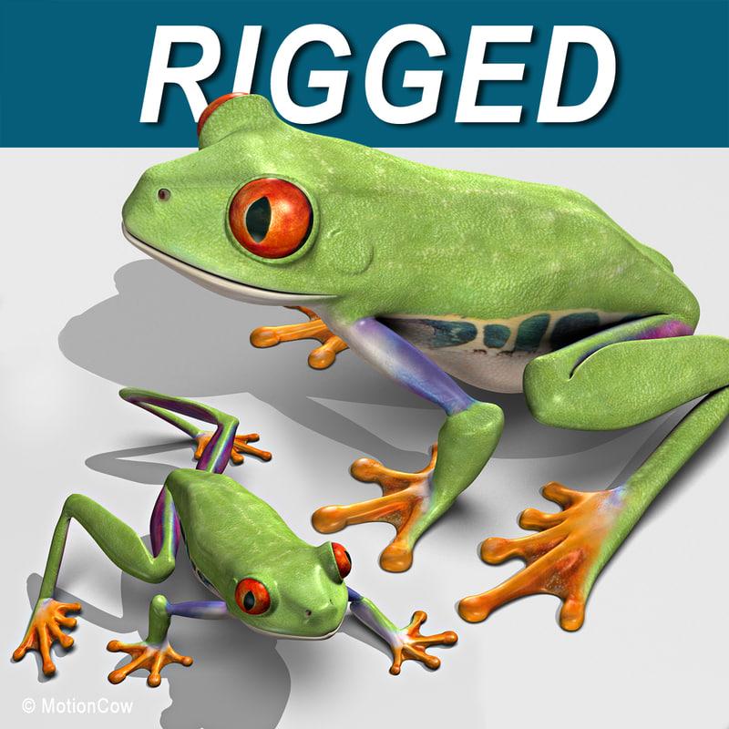 Frog_A2.jpg