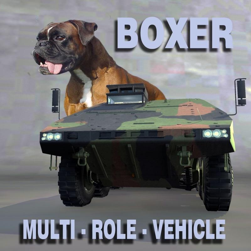 boxer_title.jpg