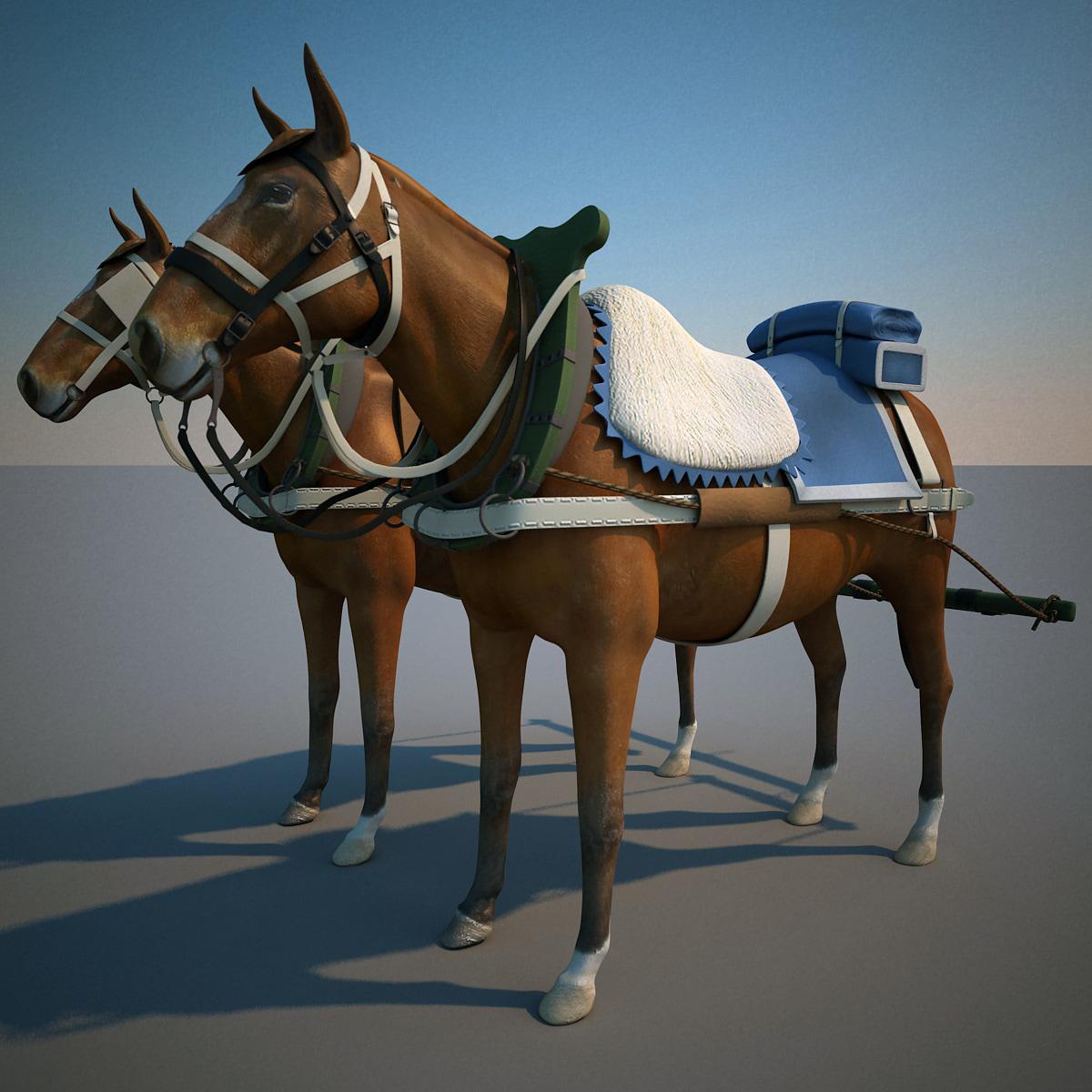 Harnessed_Horses_V5_000.jpg