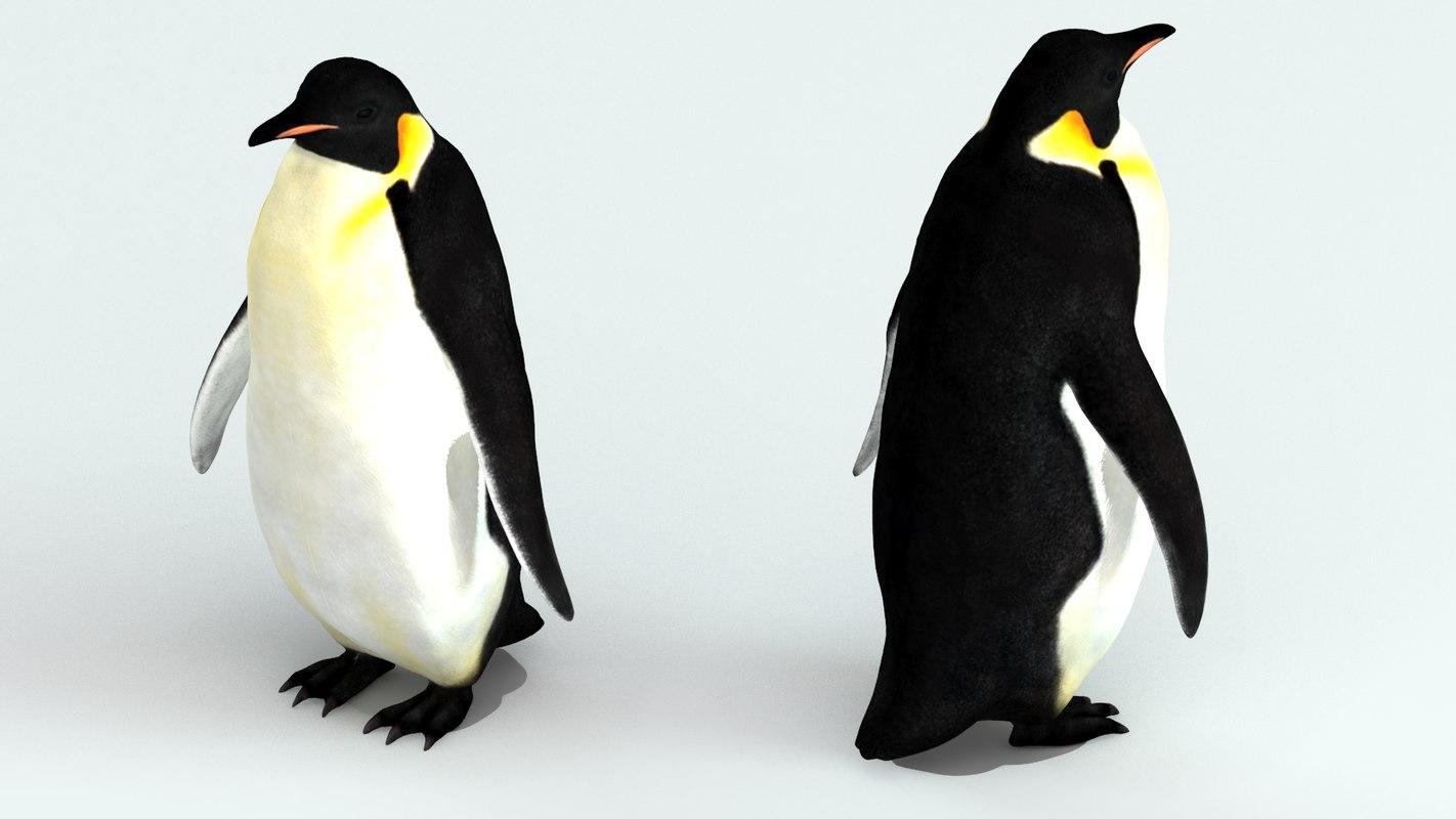emperor_penguin_rendering_3d.jpg