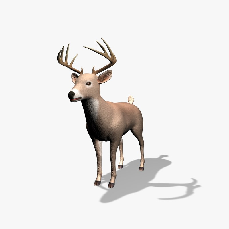 Deer05_0001.jpg
