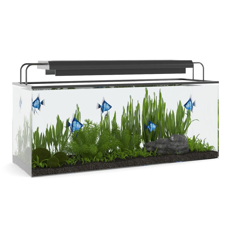 Rectangular Aquarium with Light