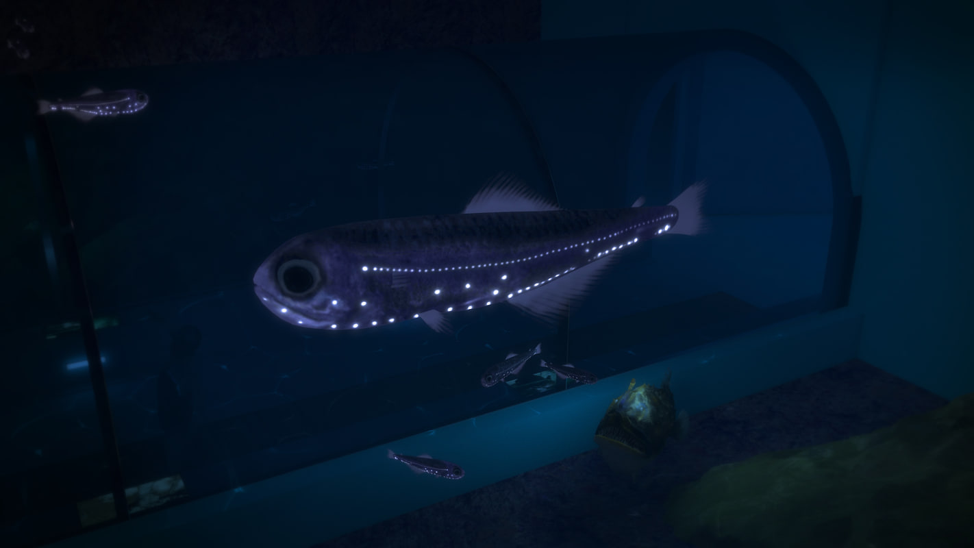 LanternFish.jpg