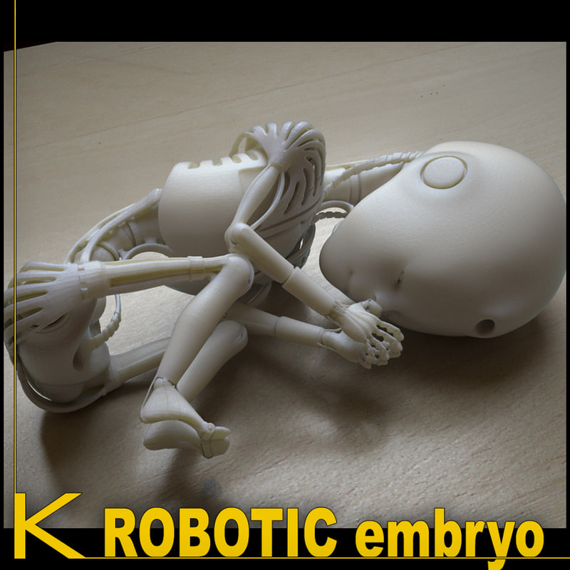 k_robot01-embryo_01.jpg